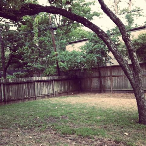 6-12backyard